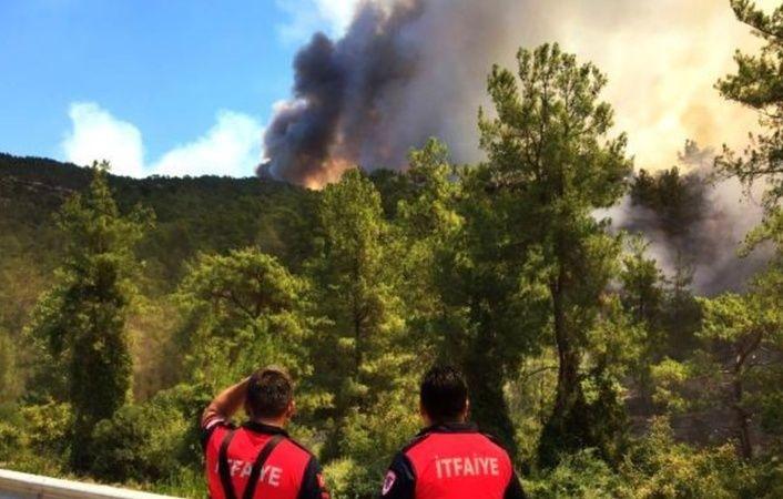 Türkiye Orman Yangınları