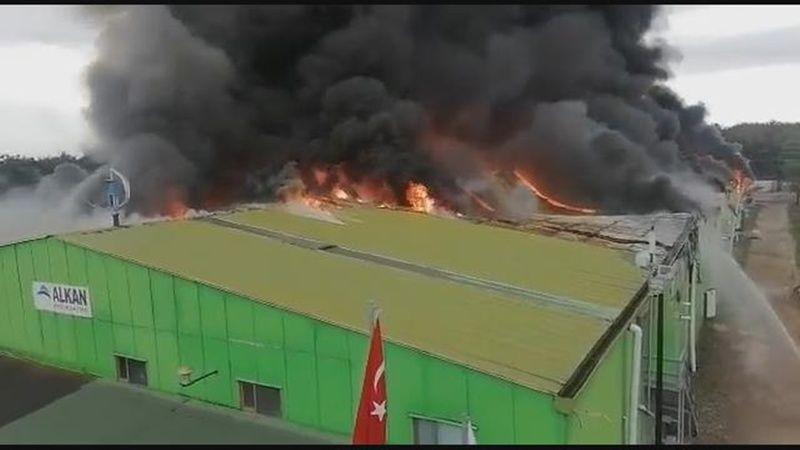 Şile Yangın Haberleri
