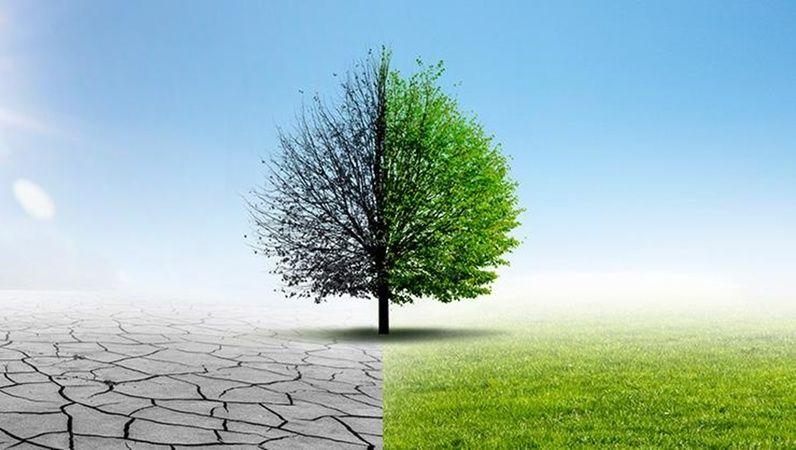 Paris İklim Anlaşması Haberleri